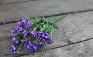 Розочка кустовая пурпурная